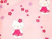 18. Hello Kitty
